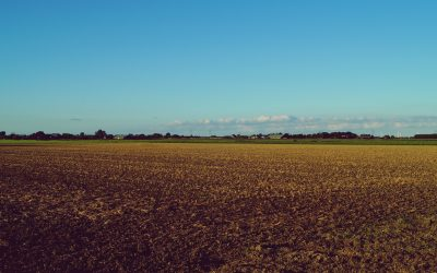 Degraded Soils and Food Shortages